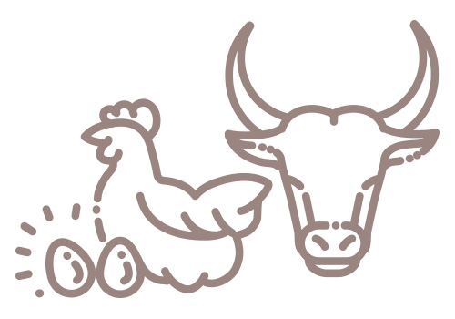 Meat/Poultry Icon